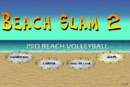 沙滩排球手2