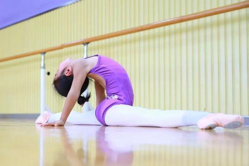 沈芯语麻豆0076 视频 国产麻豆不能请假的瑜伽课