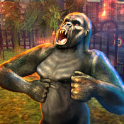 大猩猩攻击模拟器2016