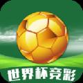 世界杯足球彩票