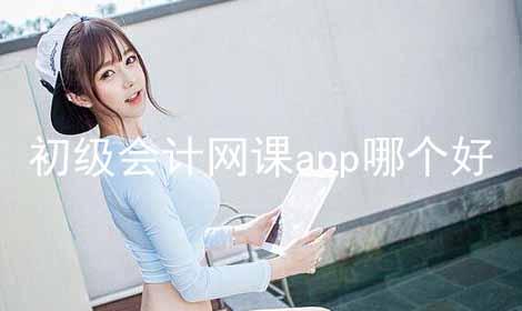初级会计网课app哪个好