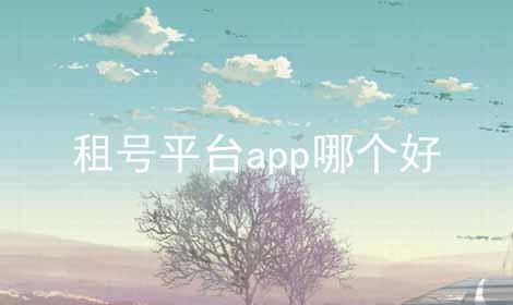 租号平台app哪个好软件合辑
