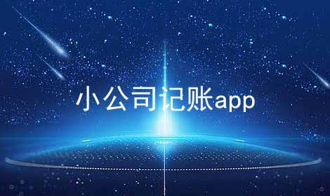 小公司记账app