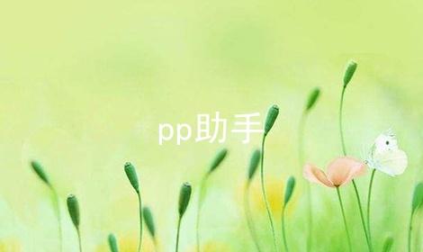pp助手软件合辑