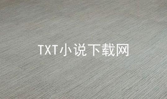 TXT小说下载网软件合辑