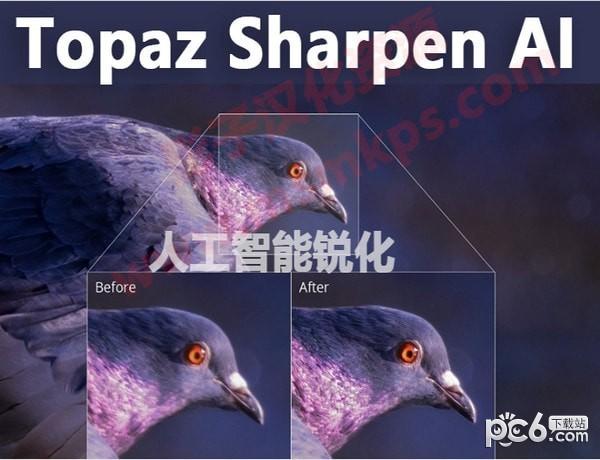 Topaz Sharpen AI(人工智能清晰锐化软件)下载