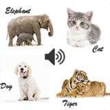 动物和声音