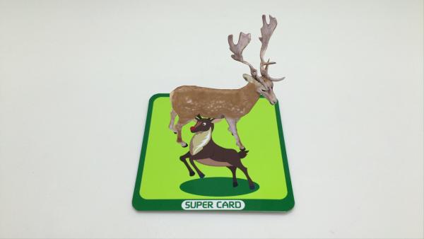 超级卡片软件截图2