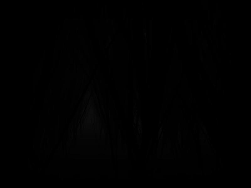 龙眼树 英文版下载