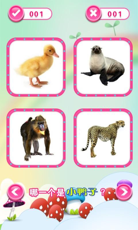 小公主认动物游戏
