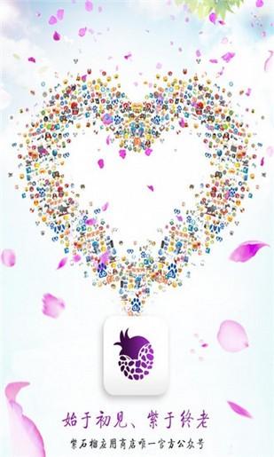 紫石榴应用商店软件截图0