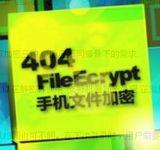 404文件加密