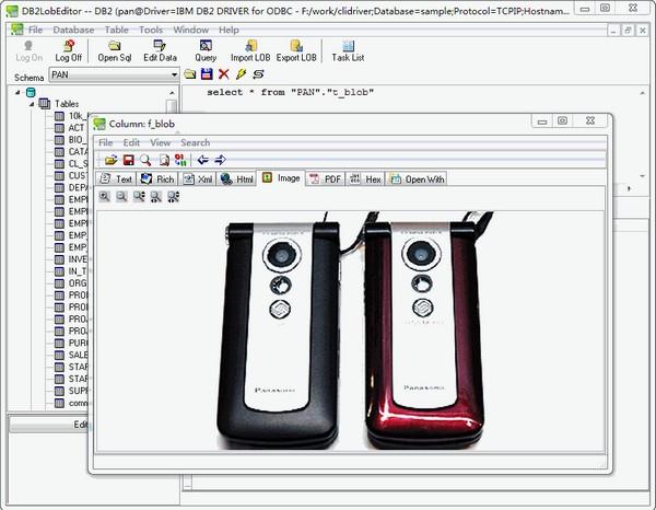 DB2LobEditor(db2数据库编辑工具)下载