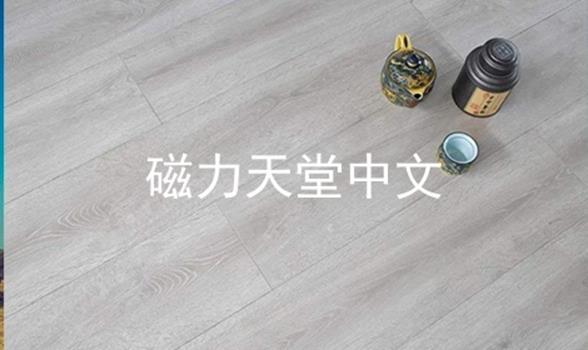 磁力天堂中文