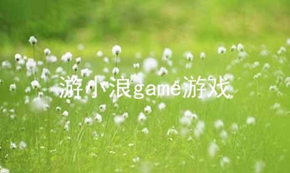 游小浪game游戏软件合辑