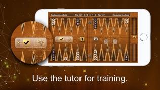 黄金西洋双陆棋高级版软件截图2