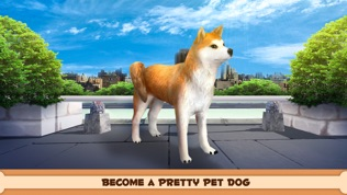 玩你的狗软件截图0