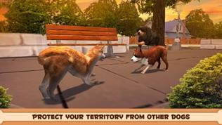 玩你的狗软件截图1