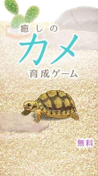 治愈的龟养成软件截图0