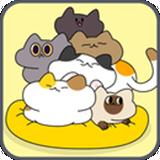 毛团猫太郎