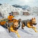 狗狗拉雪橇模拟器