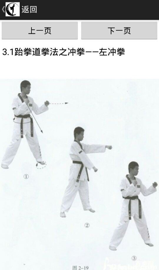 跆拳道基础