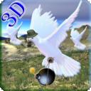 鸽子狩猎3D