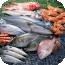 水产海鲜食谱大全