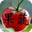 泰安果蔬网