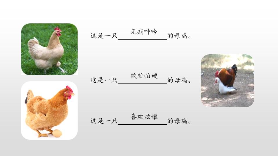 《母鸡》PPT(第2课时)下载