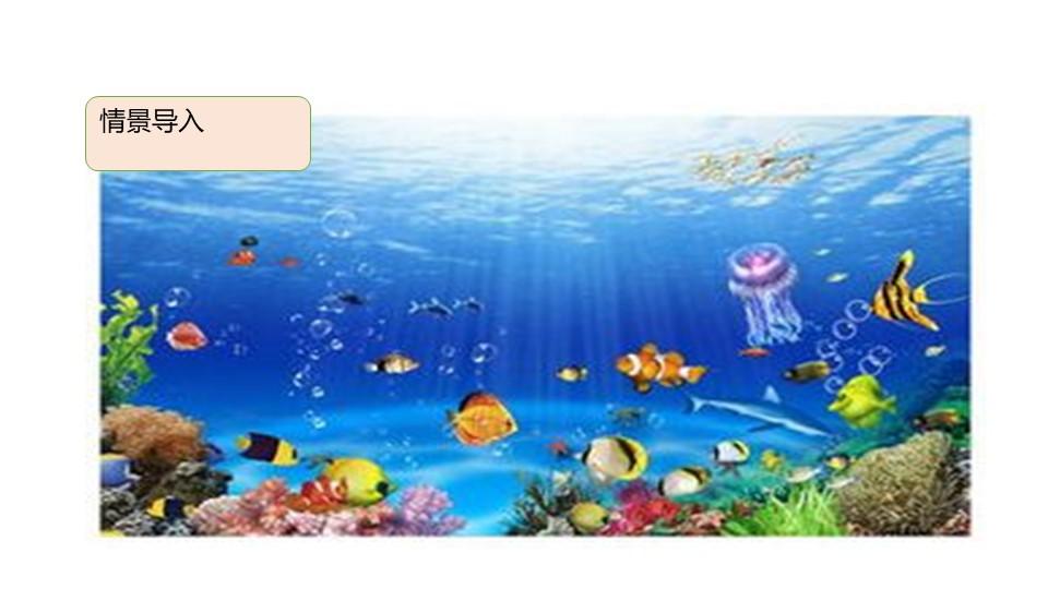 《海底世界》PPT免费课件下载