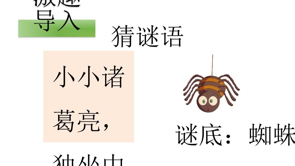《蜘蛛开店》PPT下载(第一课时)下载