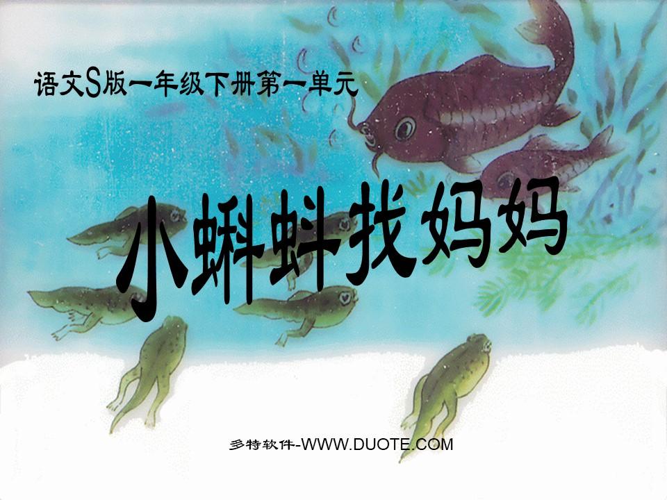 《小蝌蚪找妈妈》PPT课件7下载