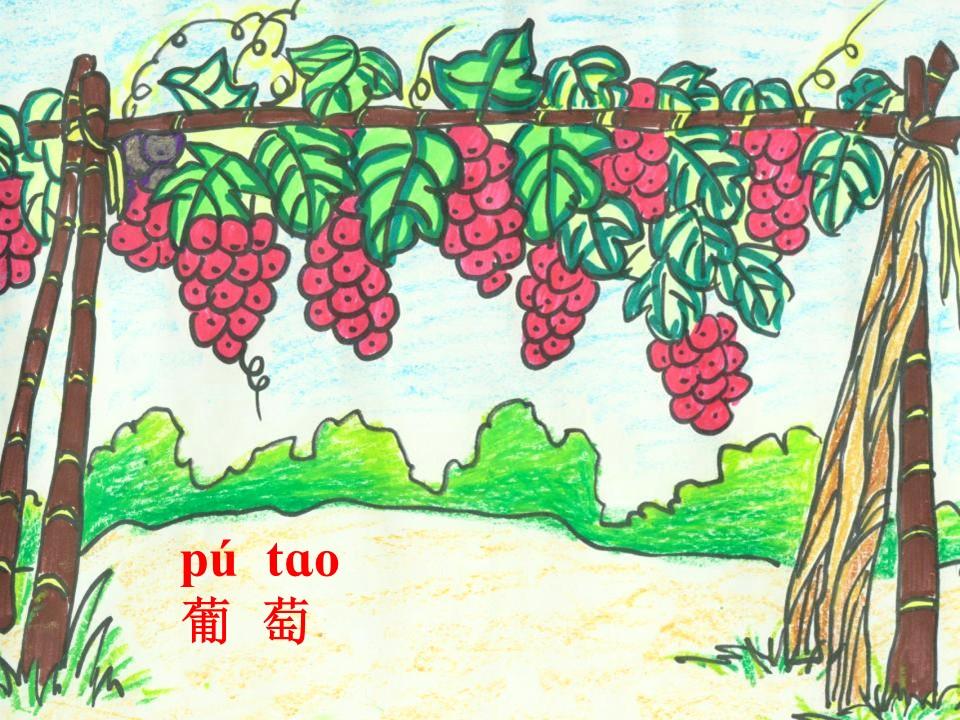 《酸的和甜的》PPT课件2下载