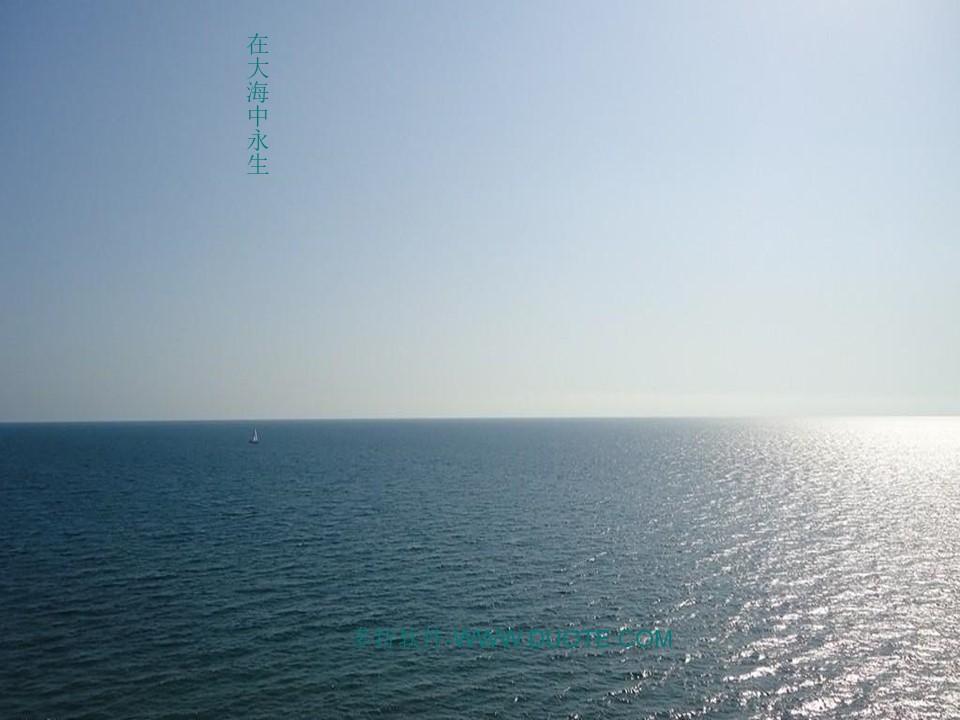 《在大海中永生》PPT课件4下载