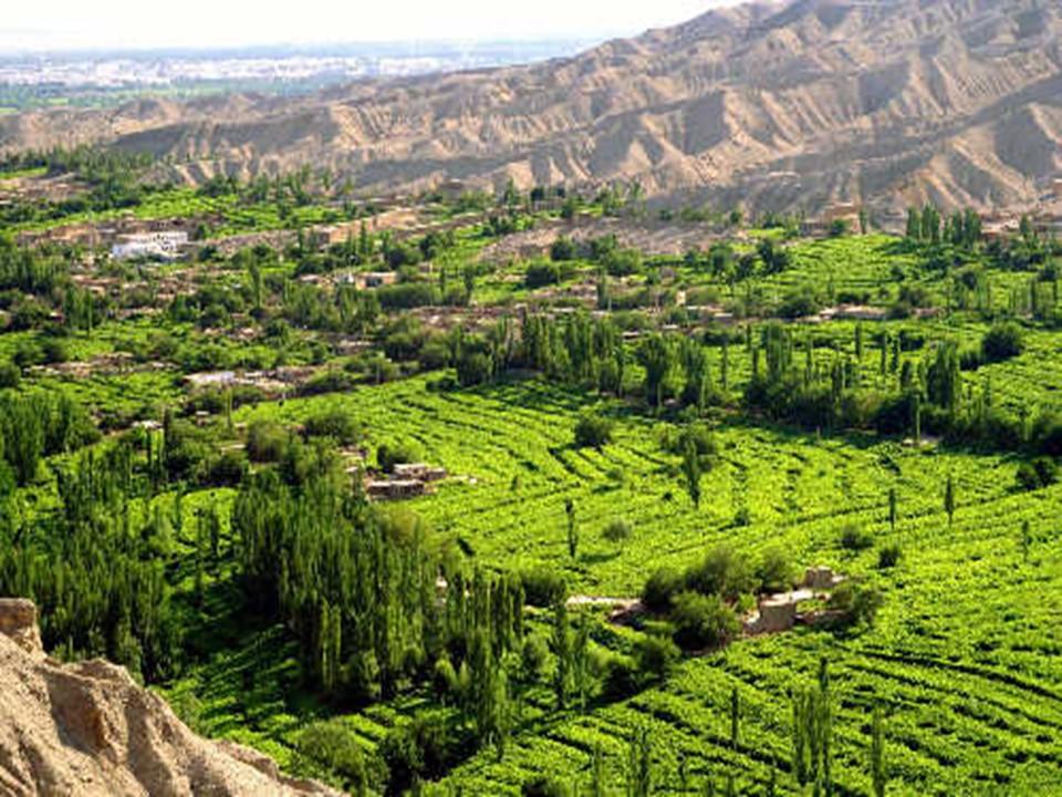 《吐鲁番的葡萄沟》PPT课件3下载