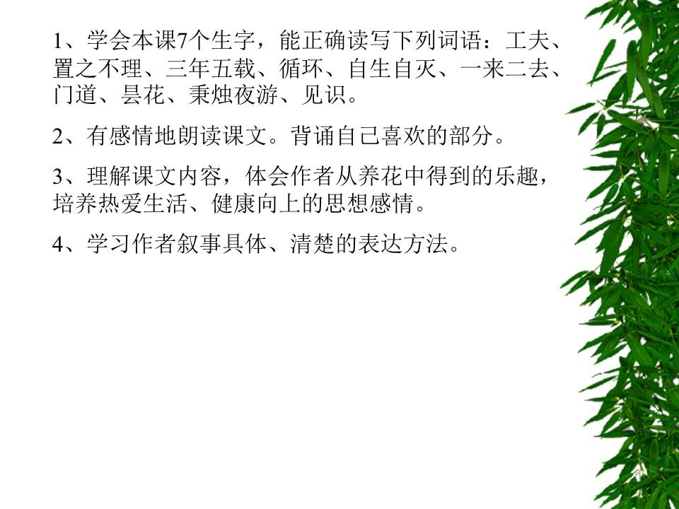《养花》PPT课件下载