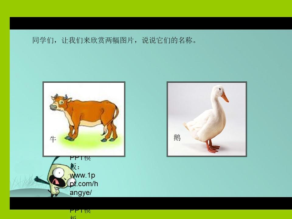 《牛和鹅》PPT课件下载