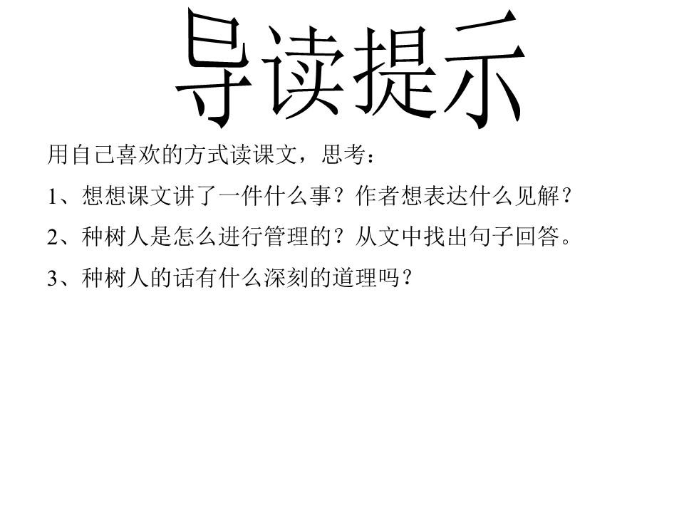 《桃花心木》PPT课件2下载