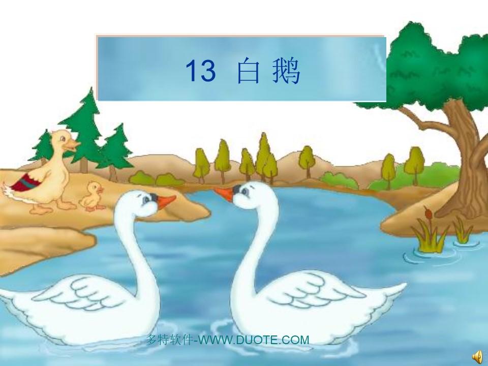 《白鹅》PPT课件下载7下载