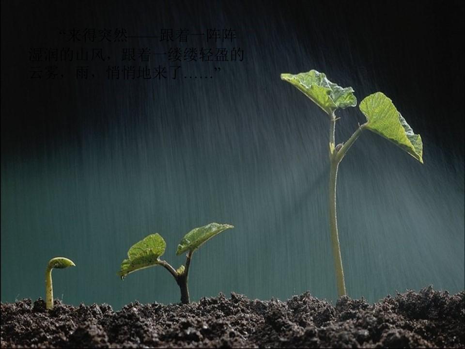 《山雨》PPT课件下载下载