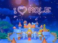 摩尔庄园孔明灯使用方式 摩尔庄园手游孔明灯怎么用