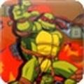 忍者神龟30命版