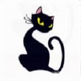 夜猫魔盒破解版