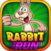 Rabbit Run Game