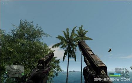 《孤岛危机》DX10 岛上打飞机截图