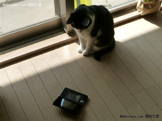 日版3DS上手体验、图赏、拆解