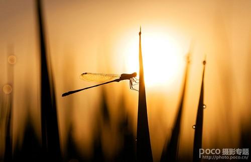 光圈快门搭配技巧 拍摄出完美风光照片