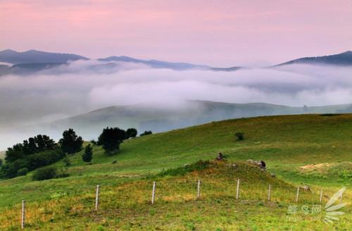 雾气拍摄攻略之梦中仙境