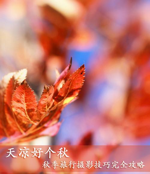完美秋天:旅行摄影攻略